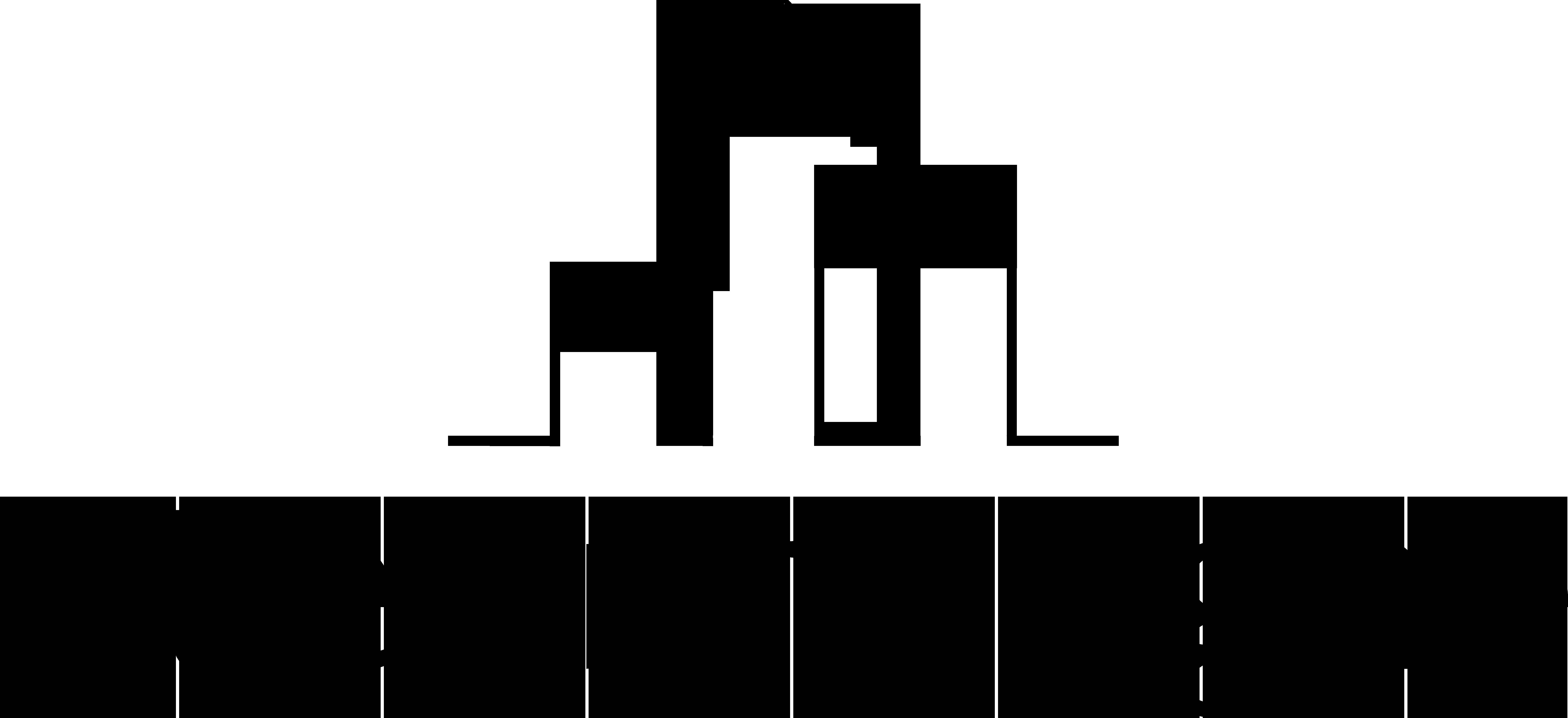 Logo Steenhaeghe